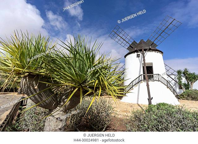 Molina de Antigua, Windmill, Fuerteventura, Canary Islands, Spain
