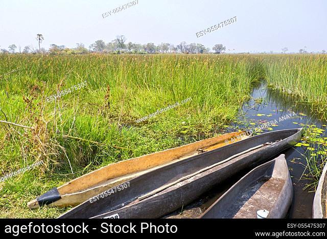 Mokoro, Dugout canoes, Traditional boat, Okavango Delta, Botswana, Africa