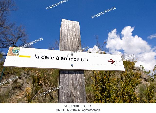 France, Alpes de Haute Provence, Naturel geological reserve of Haute Provence, Ammonite flag stone of Digne les Bains