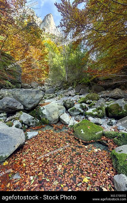 Agüerri ravine at autumn, Valles occidentales natural park, spanish pyrenees