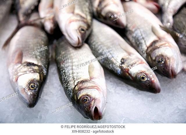 Fish in La Boqueria market, Barcelona. Catalonia, Spain