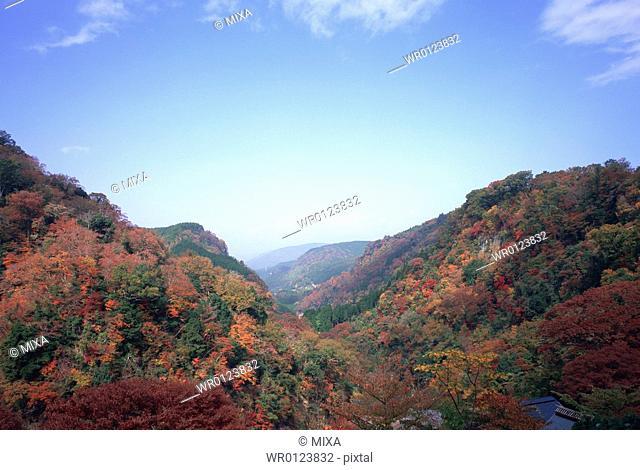 Kyusuikei, Oita Prefecture, Japan