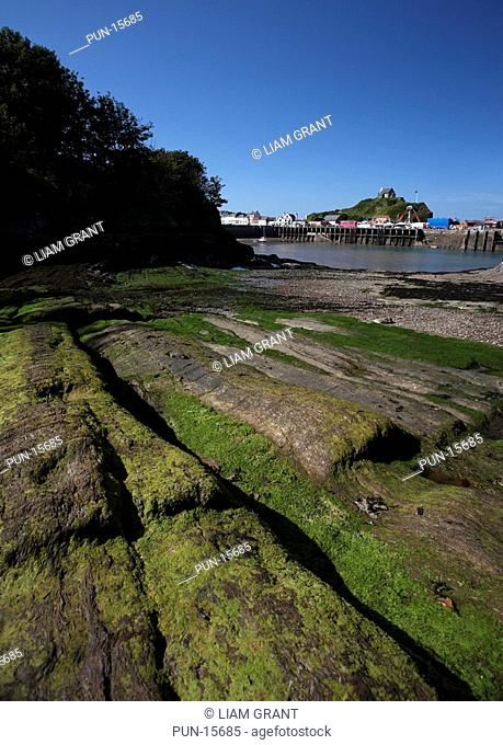 View from Rapraree Beach towards Ilfracombe Harbour and Quay, St Nicholas Chapel and Lantern Hill in summer, North Devon, United Kingdom