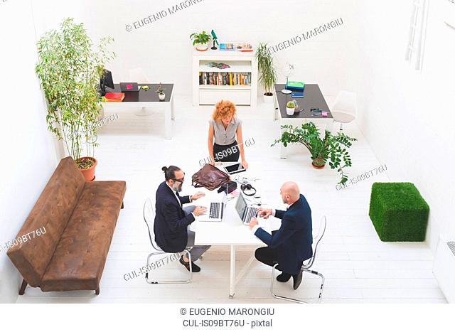 Businessmen and woman using laptops at office meeting, high angle view