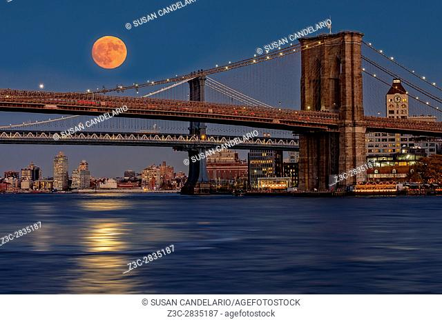 Super Moon Over Manhattan and Brooklyn Bridges NYC - A view to the Brooklyn and Manhattan Bridges from Manhattan with the super moon rising and it's bright...