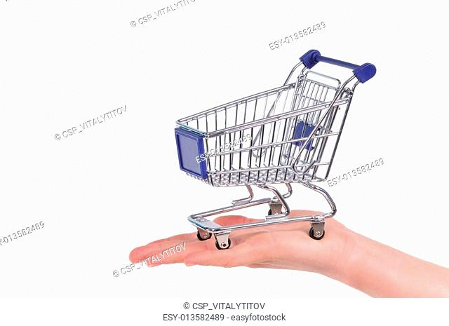 Shopping cart on a palm
