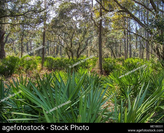 Lemon Bay Park in Englewood Florida, United States