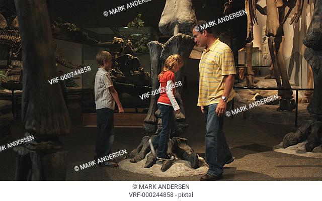 WS PAN Man with daughter (8-9) and son (10-11) in natural history museum, Lehi, Utah, USA