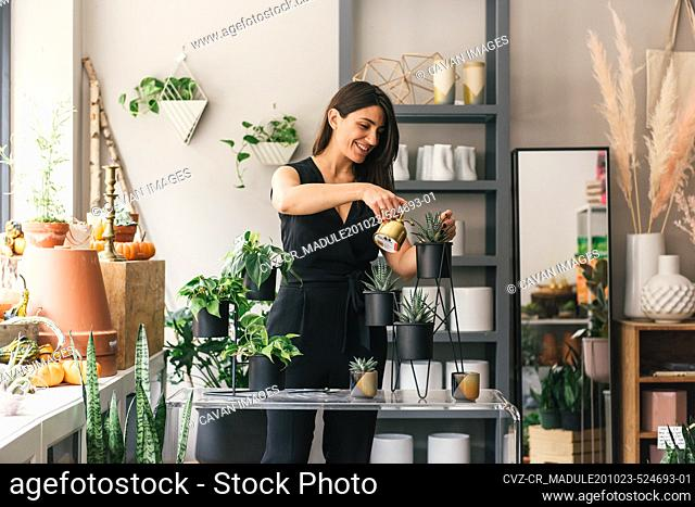 Smiling flower shop owner waters newly planted succulent display