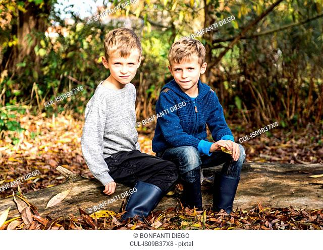Portrait of twin boys, outdoors, sitting on log in autumn