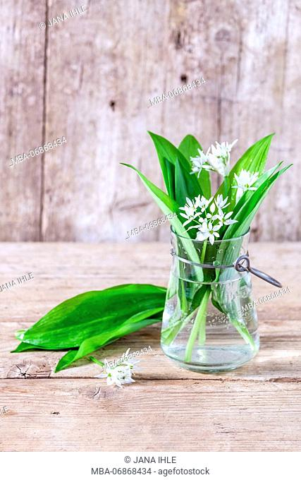 Spring still life, wild garlic leaves and wild garlic blossoms in a vintage glass vase on an old wooden table in front of an old wooden wall
