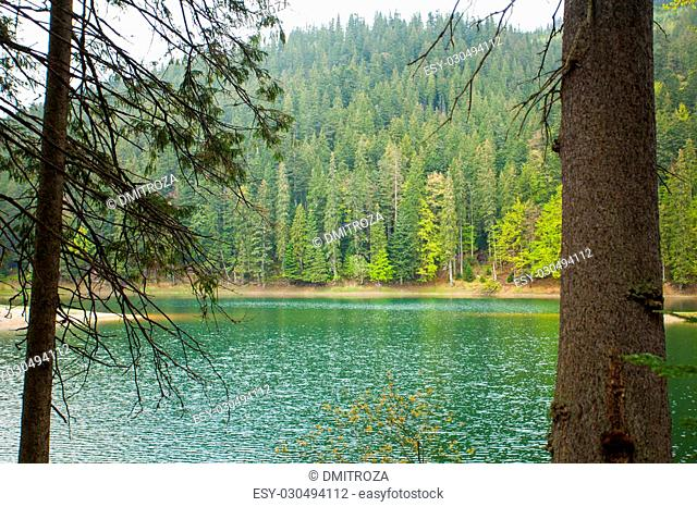 Amazing summer view of clear lake surrounded by dense forest
