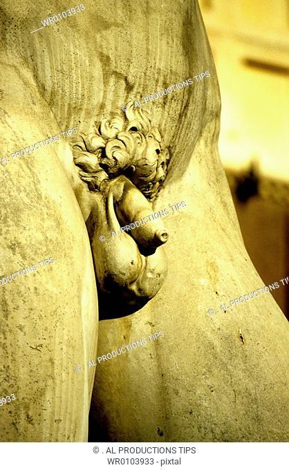Italy,Tuscany, Florence, Signoria Square, David, artist Michelangelo Buonarroti, The giant, white marble statue, penis