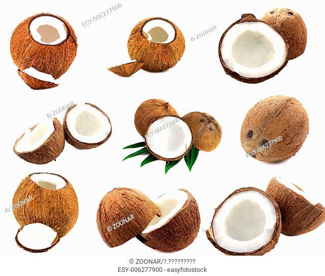 set of coconut images