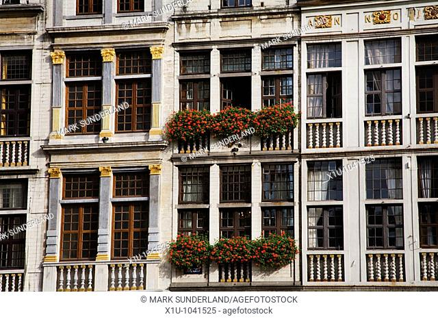 Building Detail in The Grand Place Brussels Belgium