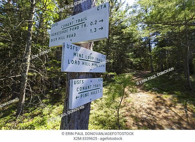 Trail junction of the Conant Trail and Mine Loop Trail on Lord Hill in Maine during the spring months. This loop trail travels over Pine Hill and Lord Hill