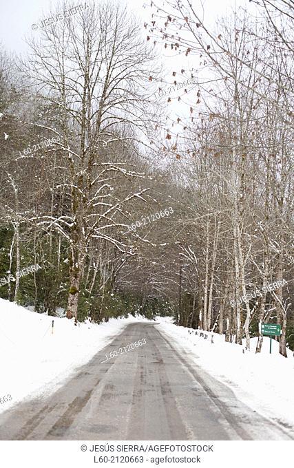 Road in National Park Ordesa and Monte Perdido, Aragón, Spain
