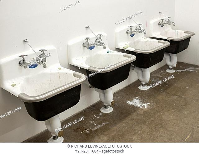 An array of sinks in an art studio in New York