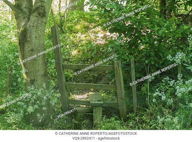 Wooden country stile in hazy sunlit glade on woodland walk in Gloucestershire, England, UK