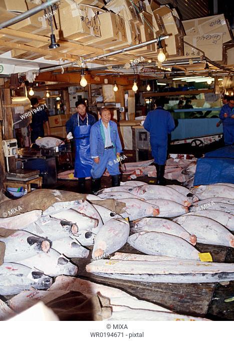 Fish market, Tsukiji, Tokyo, Japan