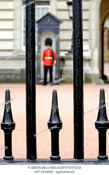 Guardsman Outside Buckingham Palace, Viewed Through the Railings. London, England, United Kingdom