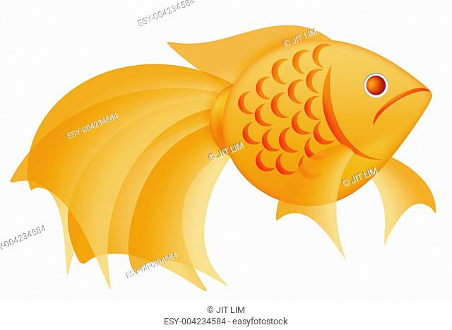 Fancy Goldfish Illustration Isolated on White