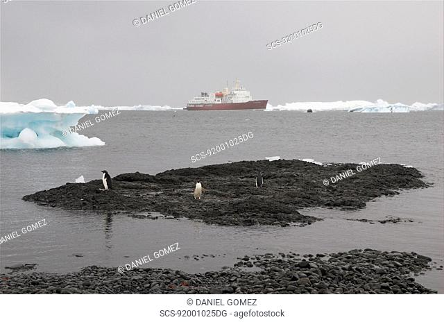 The MV Polar Star, waiting for tourists to return, Brown Bluff, Antartic Peninsula RR
