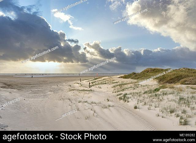 Dune landscape on the beach, Sankt Peter-Ording, Schleswig-Holstein, Germany, Europe