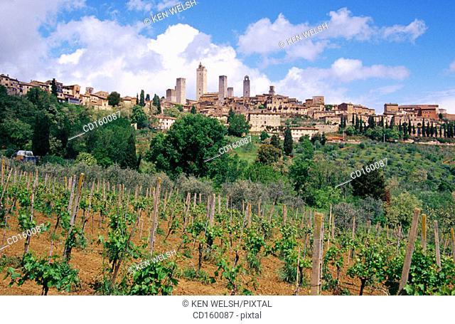 San Gimignano. Tuscany. Italy