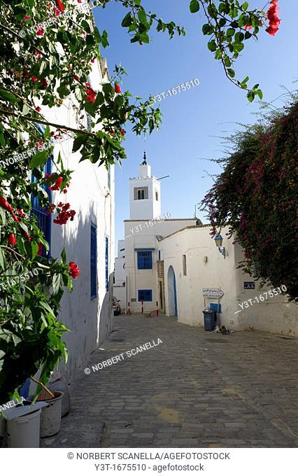 North Africa, Tunisia, Sidi Bou Said. Typical white houses of the medina