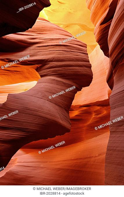 Lady in the Wind, red sandstone of the Moenkopi formation, rock formations, colours and textures in the Lower Antelope Slot Canyon, Corkscrew Canyon, Page