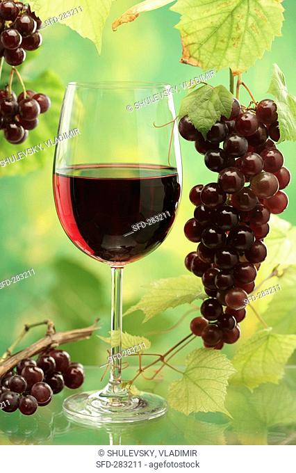 Glass of red wine, red grapes and vine leaves