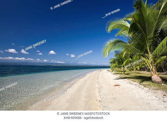 Star Beach, Colon Island, Bocas del Toro Province, Panama
