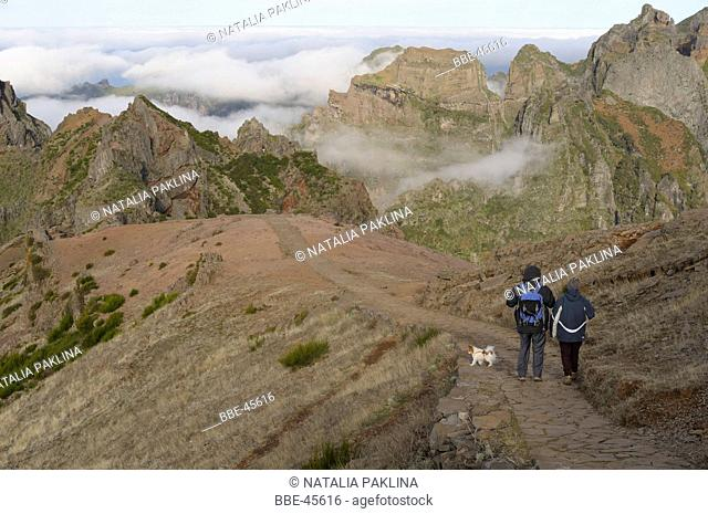 walking over highest point of madeira (1800m)