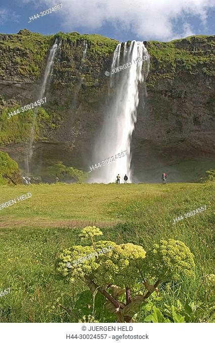 Iceland, Seljalandsfoss Waterfall in the South