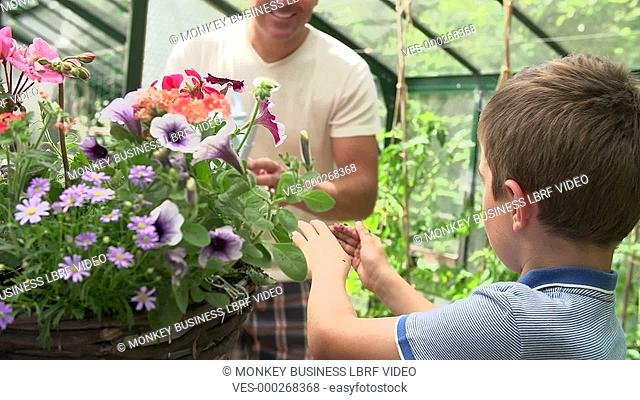 Father helps son to water flowers in hanging basket. Shot on Sony FS700 in PAL format at a frame rate of 25fps