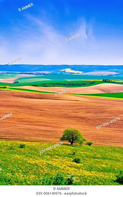 Spring landscape with blue heaven, South Moravia, Czech Republic, Central Europe