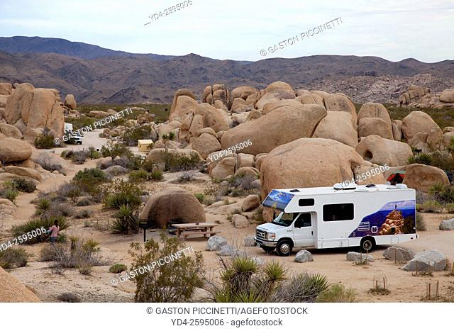 Campground, Mojave Desert, Joshua Tree National Park, California, USA