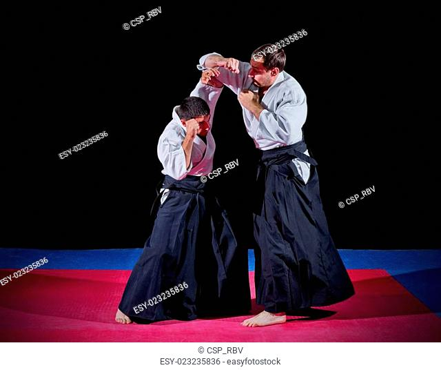 Two martial arts fighters