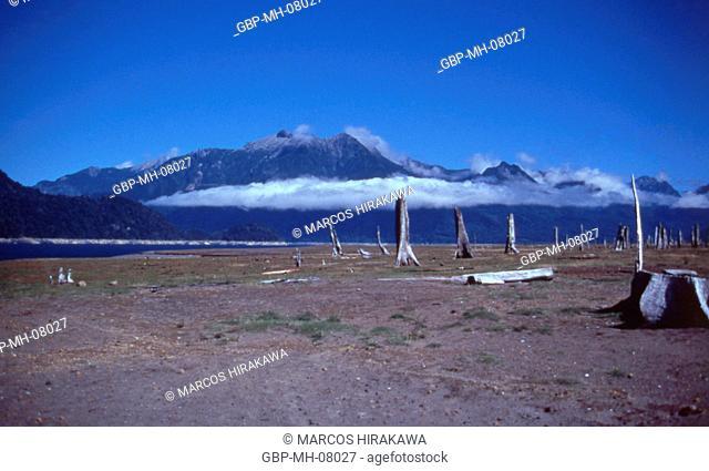 Alerre Andino National Park, Chapo Lake, Chile 1997