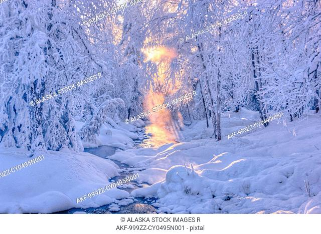 Small stream in a hoarfrost covered forest with rays of sun filtering through the fog in the background, Russian Jack Springs Park, Anchorage