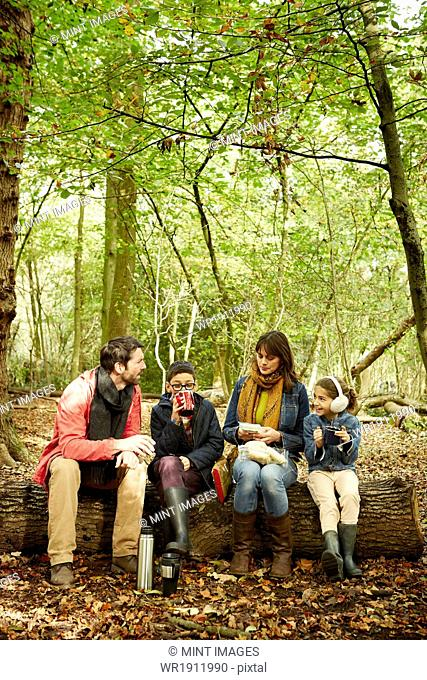 Beech woods in Autumn. Parents and two children sitting on a log having a picnic