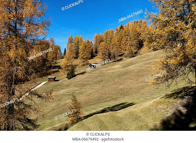 Pastures of Ciavaza, Dolomites, South Tyrol, Italy. Autumn at the pastures of Ciavaza