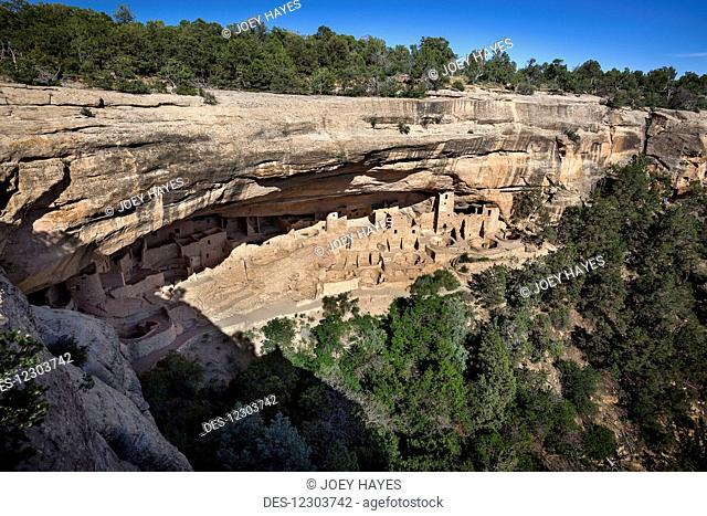 Mesa Verde National Park's Cliff Palace ancient dwellings in the evening sunlight with a clear blue sky; Colorado, United States of America