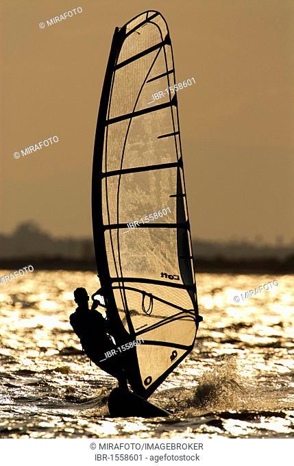 Windsurfer in backlight near the Santa Pola resort, Mediterranean coast, Spain, Europe