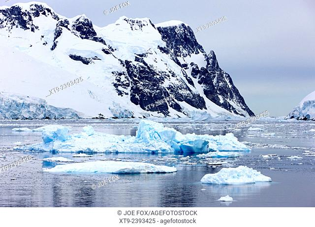 icebergs in the lemaire channel Antarctica