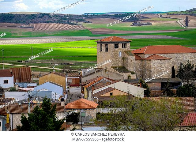 Overview of the Padilla del Duero village and the agricultural fields within the denomination of origin of Ribera del Duero wines in the province of Valladolid...