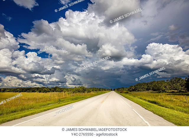 Road running intio the distance with big dramatic white storm clouds in blue sky in Southwestern Florida