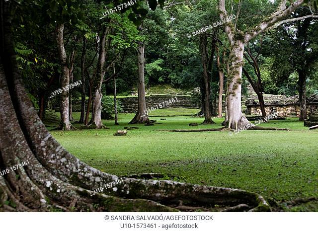 The Río Usumacinta Valley, Yaxchilán Archaeological Site, Chiapas, México