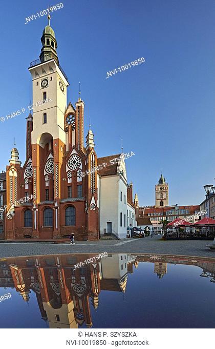 City Hall at Market in Frankfurt (Oder), Brandenburg, Germany